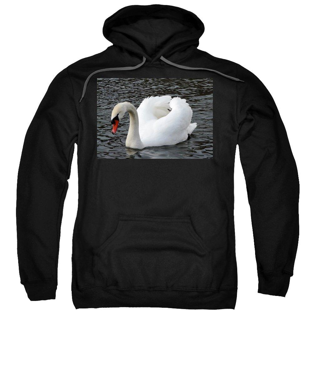 Bird Sweatshirt featuring the photograph Isar Swan by Valerie Ornstein