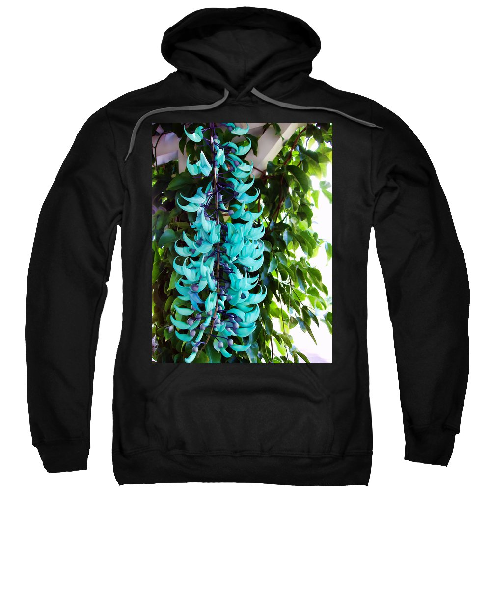 Flowers Sweatshirt featuring the photograph Jade 8 by Dawn Eshelman