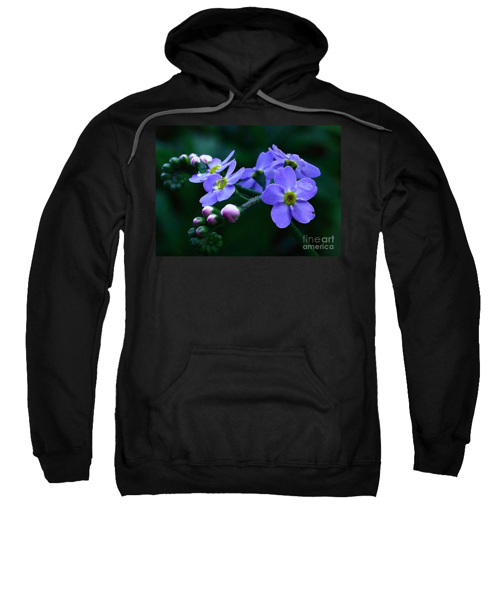 Forget-me-not Sweatshirt featuring the photograph Jewel In The Shadows by Shadedfaces