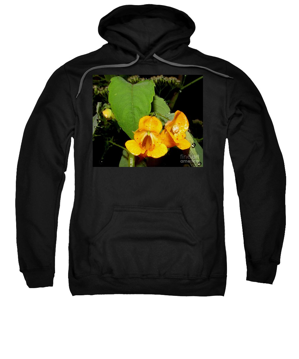 Jewel Weed Wildflowers Of Appalachia North American Wildflowers Wild Flora Forest Flowers Forest Flora Wild Orchids Orange Orchids North American Orchids Night Flowers Orange Wildflowers Orange Blooms Orange Flowers Sweatshirt featuring the photograph Jewel Weed by Joshua Bales