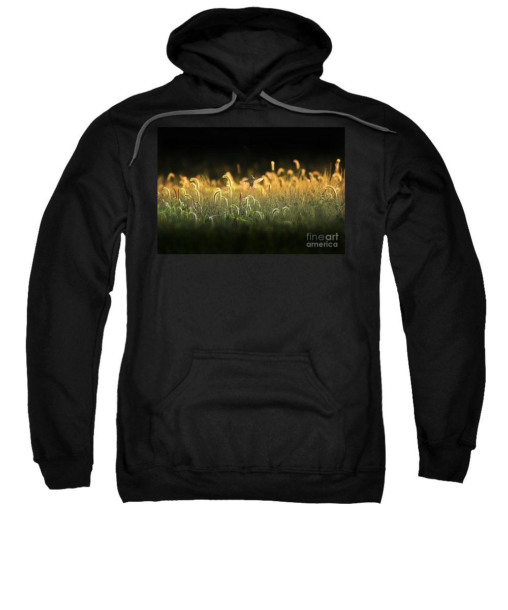 Landscape Sweatshirt featuring the photograph Joy Of Summer - Version 2 by Rob Blair