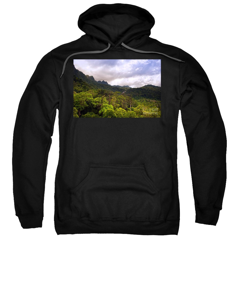 Malaysia Sweatshirt featuring the photograph Jungle Landscape by Tim Hester