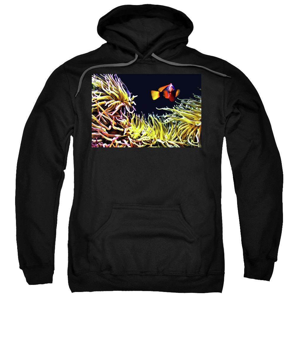 Fish Sweatshirt featuring the digital art Key West Fish by Joan Minchak