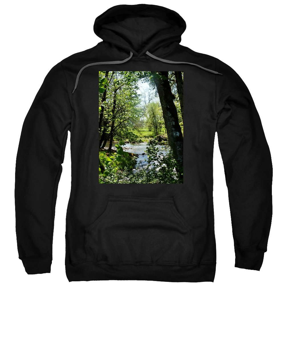 Trees Sweatshirt featuring the photograph Larwood Stream by VLee Watson
