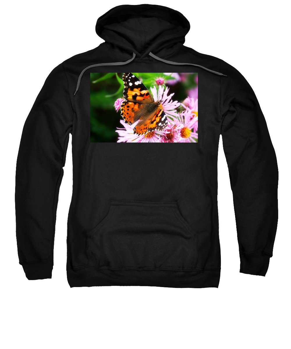 Flower Sweatshirt featuring the photograph Late Summer Painted Lady by Marilyn Hunt