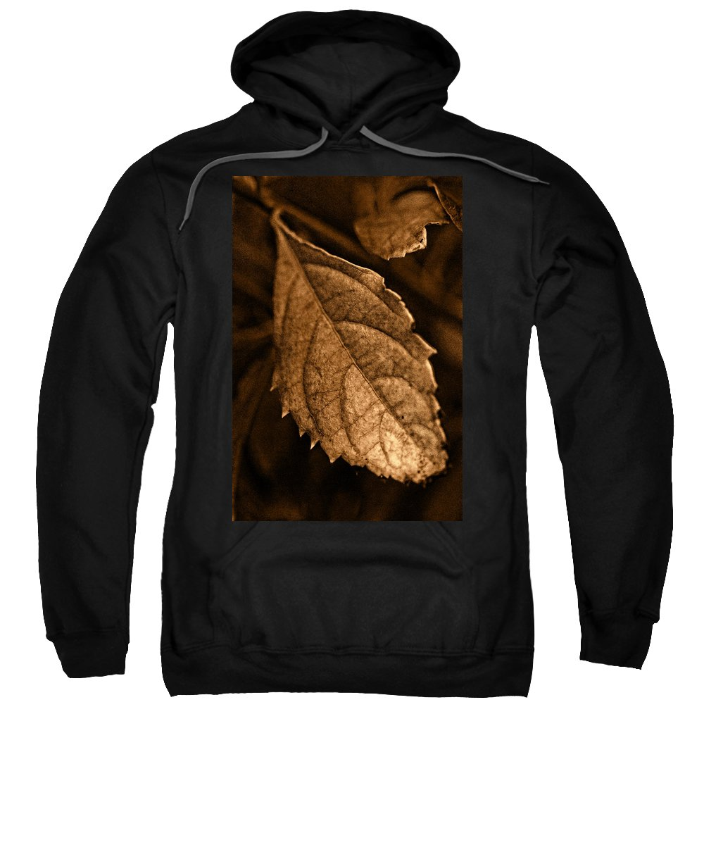Leaf Sweatshirt featuring the photograph Leaf by Agustin Uzarraga
