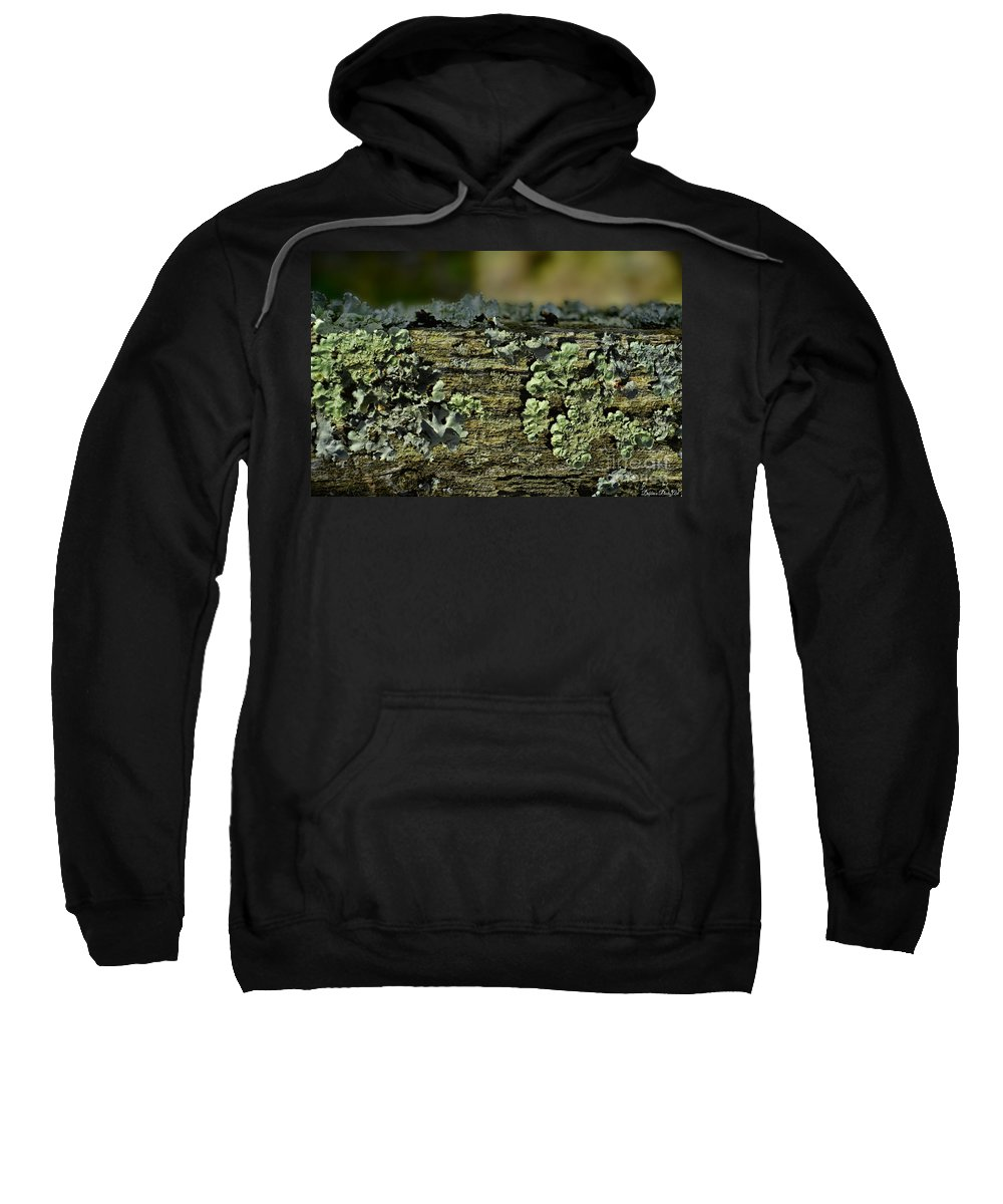 Closeup Sweatshirt featuring the photograph Lichen Macro I by Debbie Portwood