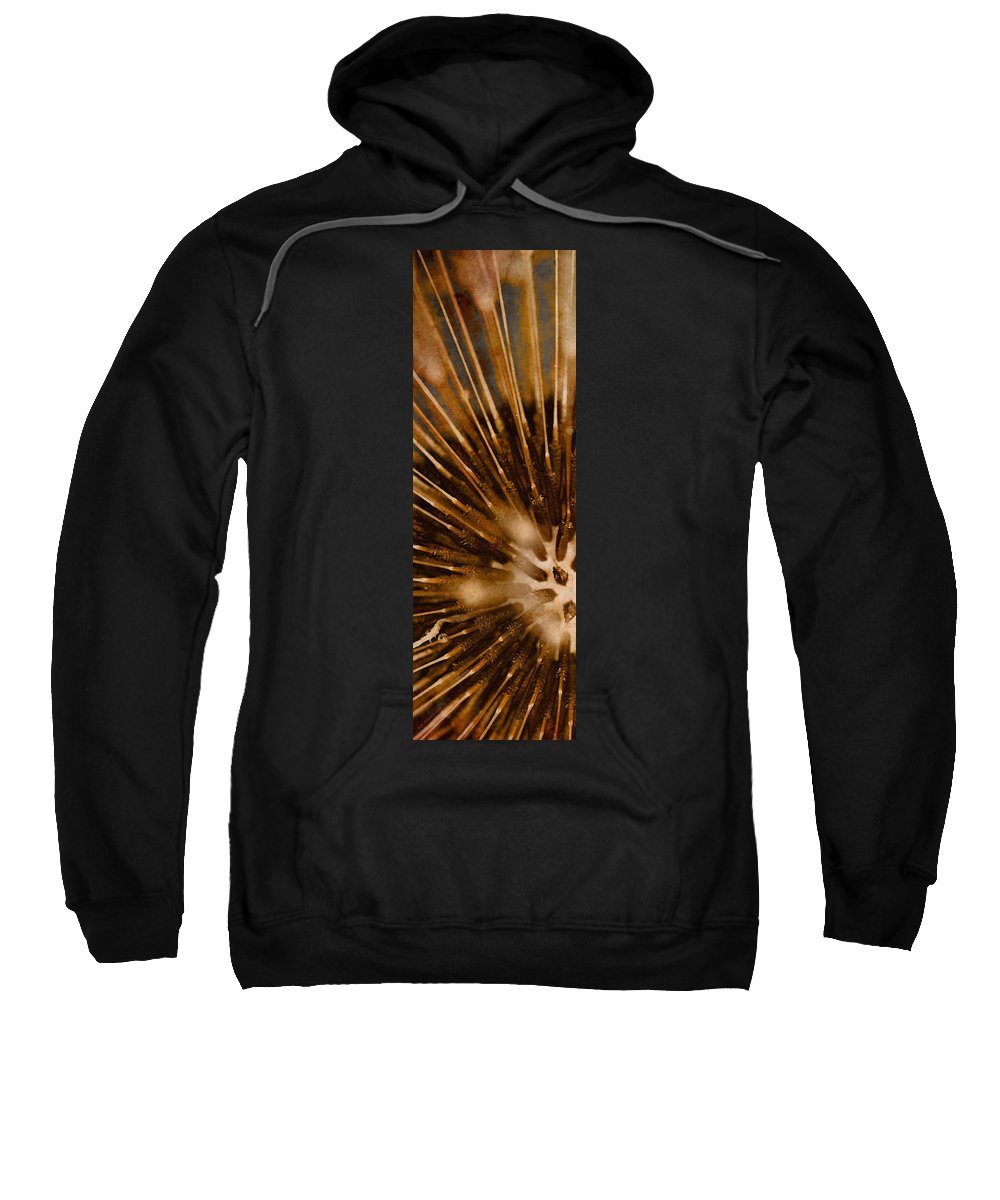Dandelion Sweatshirt featuring the photograph Lifecycle 1 by WB Johnston