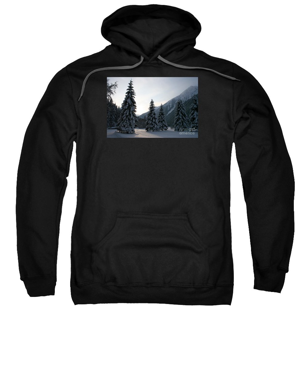 Snow Sweatshirt featuring the photograph Like Powdered Sugar by Christiane Schulze Art And Photography