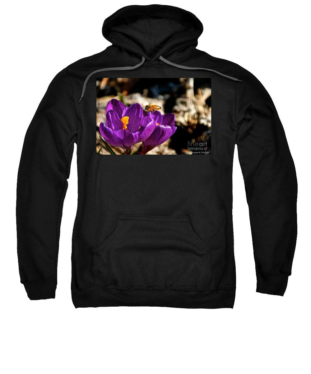 Flower Sweatshirt featuring the photograph Lil' Buzzer by Susan Herber