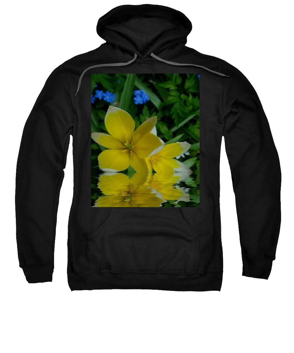 Waterscape Sweatshirt featuring the mixed media Lilium Of Gold by Pepita Selles