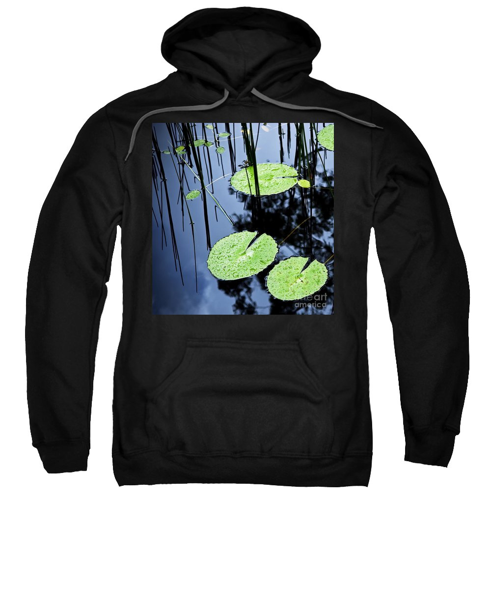 Background Sweatshirt featuring the photograph Lilly Pad Pond by Tim Hester