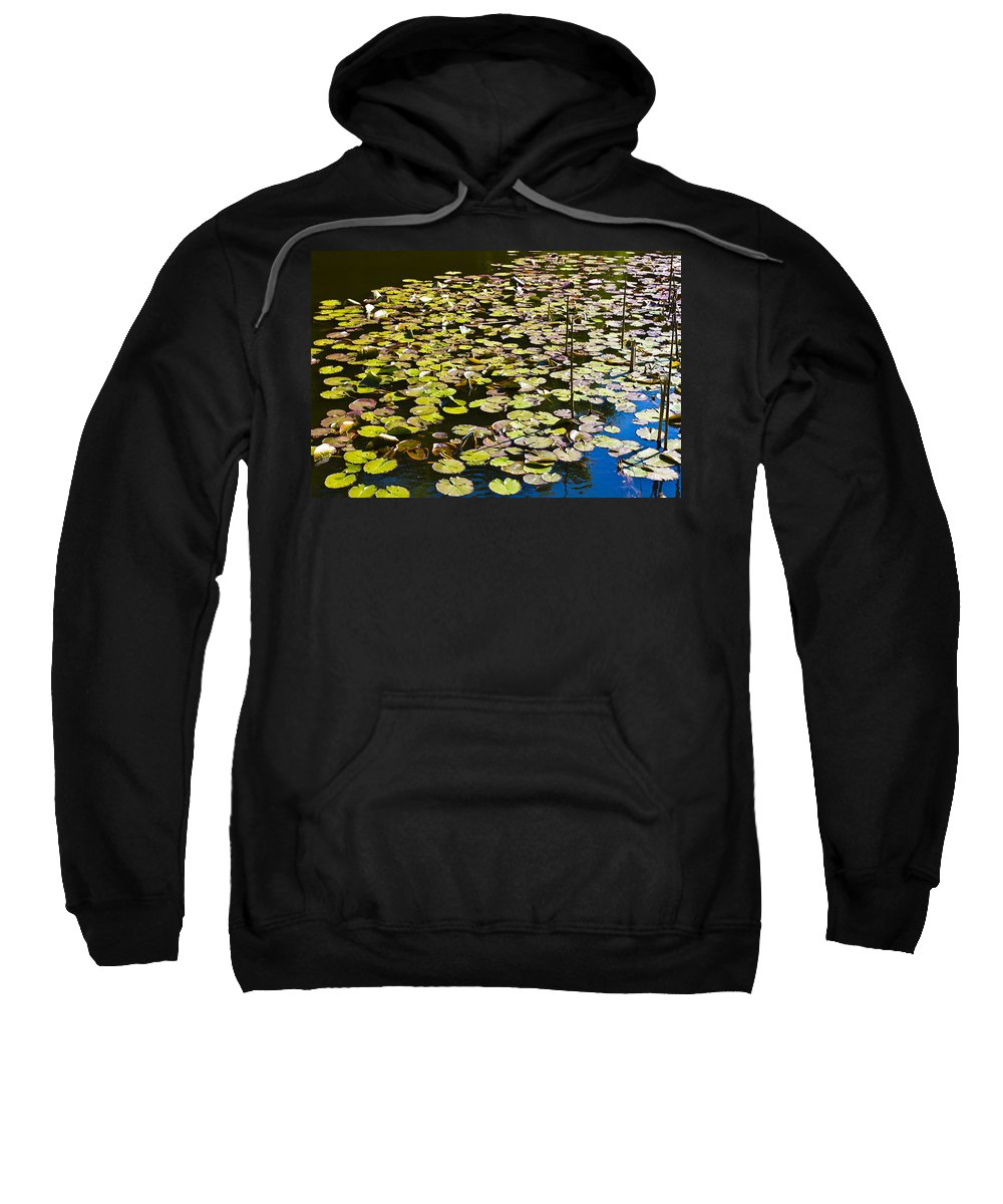 Pond Sweatshirt featuring the photograph Lilly Pads by David Pyatt