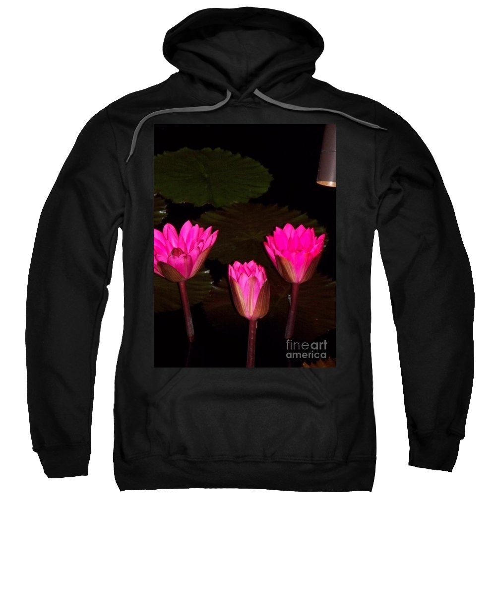 Water Lilies Sweatshirt featuring the photograph Lily Night Time by Eric Schiabor