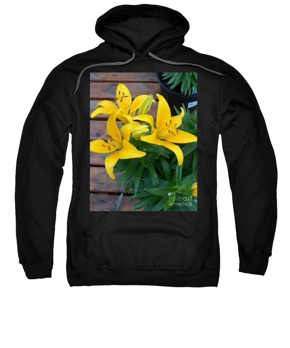 Photograph Sweatshirt featuring the photograph Lily Yellow Flower by Eric Schiabor