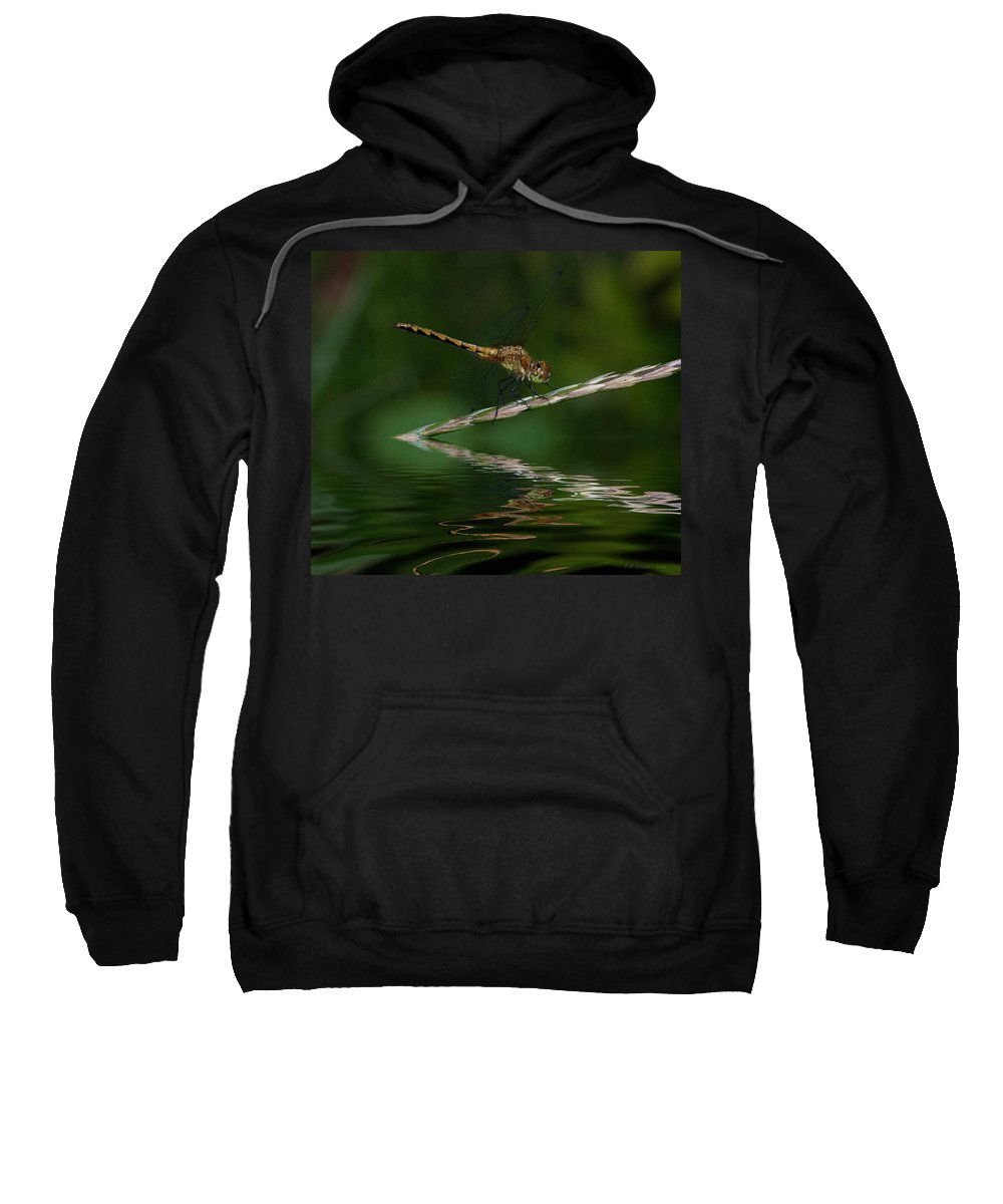 Sweatshirt featuring the photograph Little Yeller 2 by WB Johnston