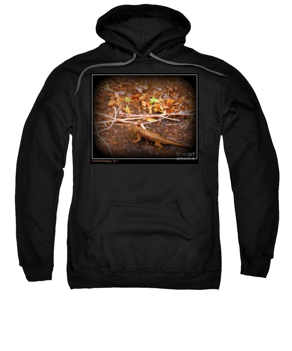 Lizard Sweatshirt featuring the photograph Lizard On The Loose by Bobbee Rickard