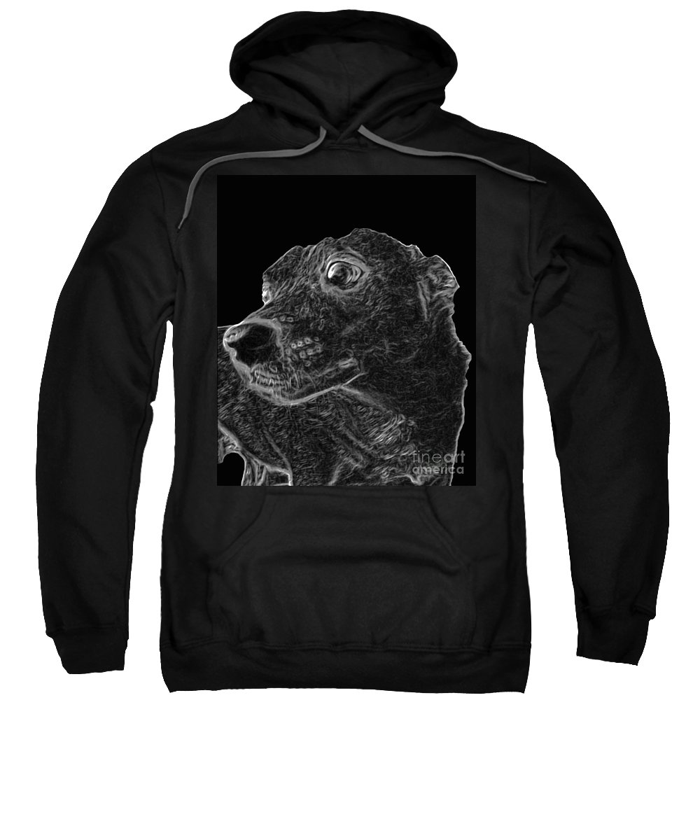 Dog Sweatshirt featuring the photograph Love The Concern Pet Dog Rendering by Minding My Visions by Adri and Ray