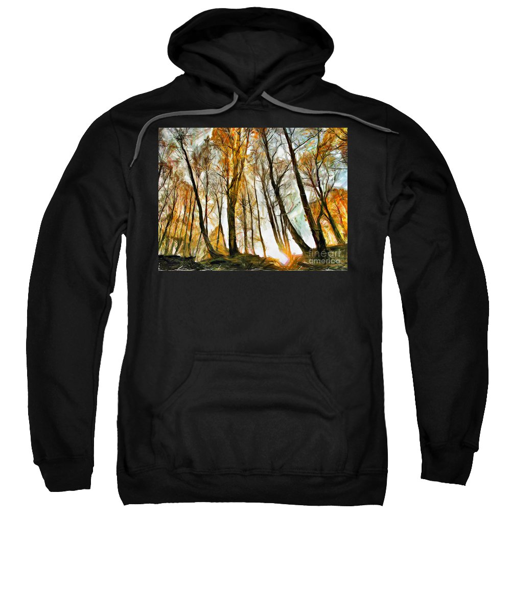 Wood Sweatshirt featuring the drawing Magical Forest - Drawing by Daliana Pacuraru