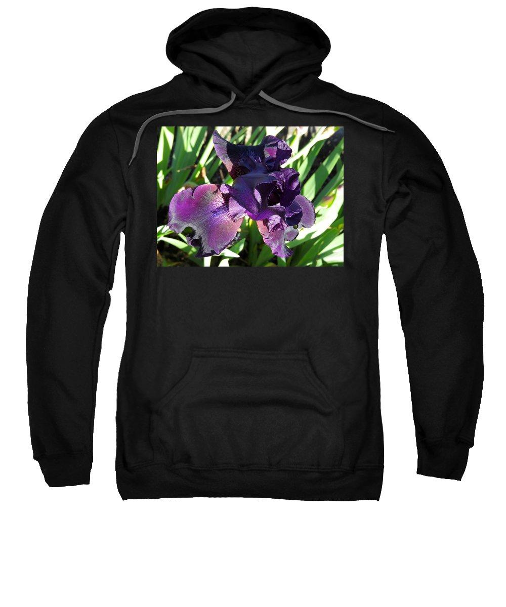 Iris Sweatshirt featuring the photograph Magical Purple Iridescent Iris by De Ann Troen