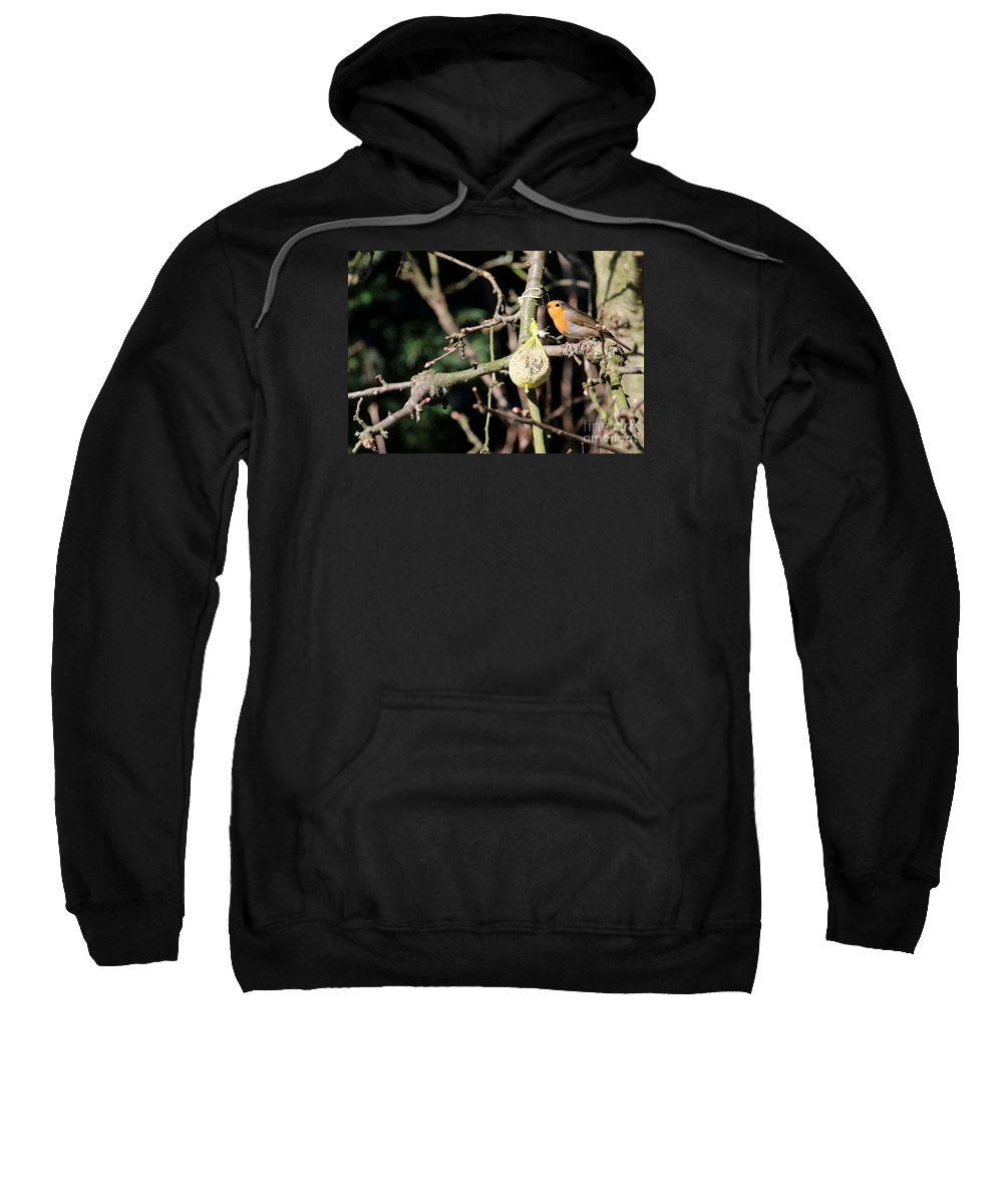 Robin Sweatshirt featuring the photograph Male European Robin by Christiane Schulze Art And Photography