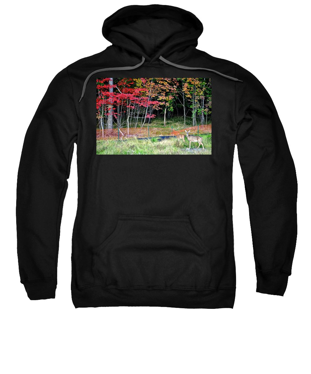 Nature Sweatshirt featuring the photograph Man Ruins Nature by Frozen in Time Fine Art Photography