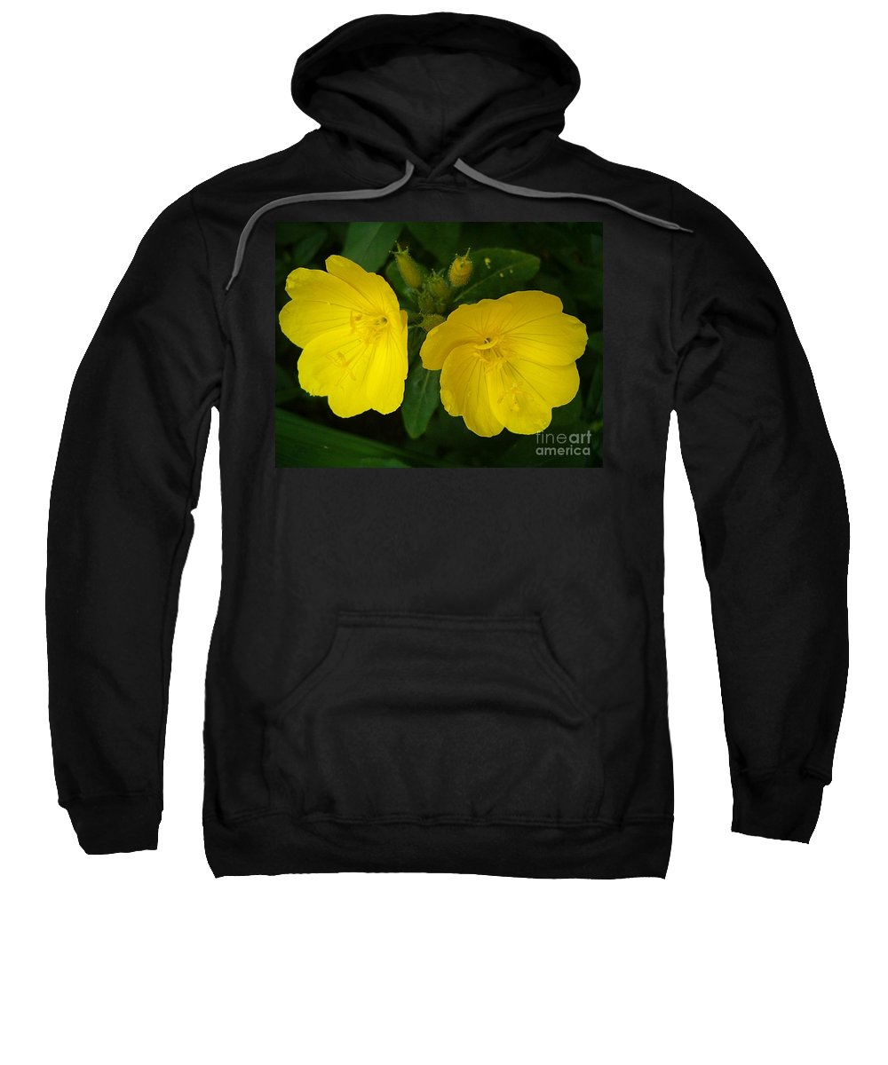 Yellow Flowers Sweatshirt featuring the photograph Matching Pair by Sara Raber