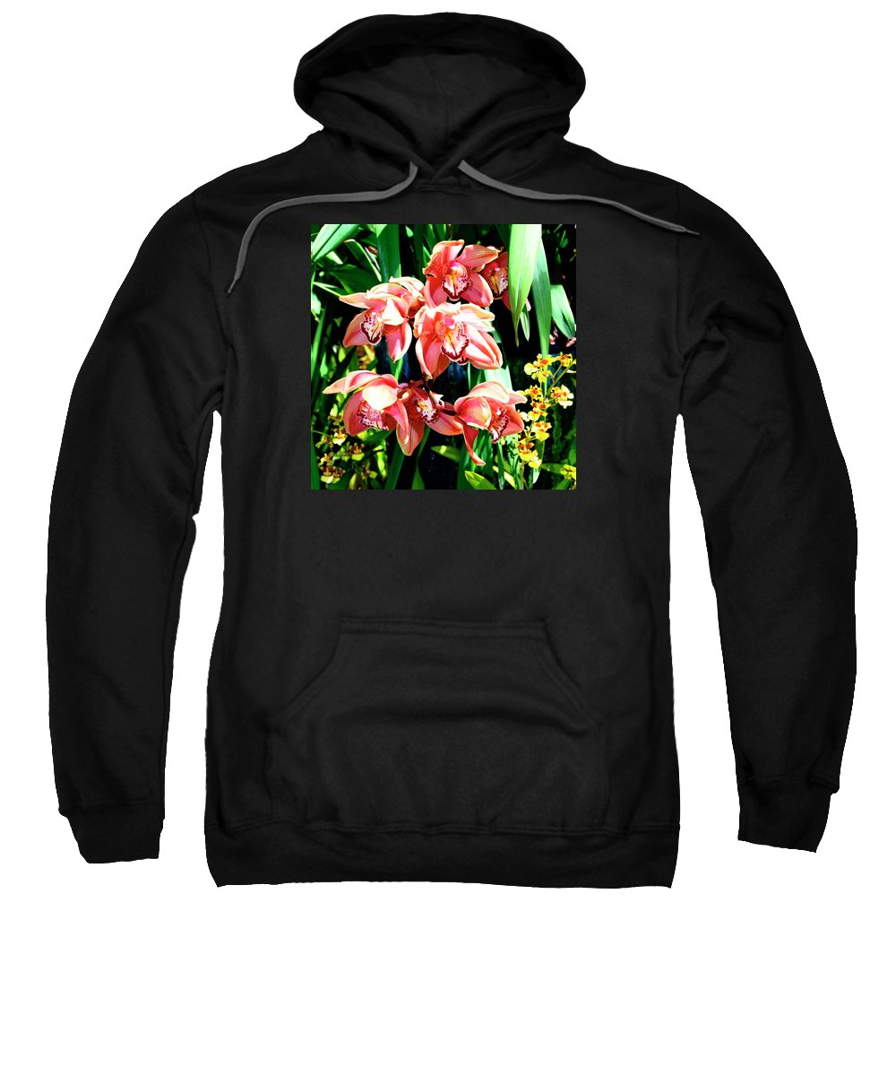 Orchid Sweatshirt featuring the photograph Joy Orchids by William Dey
