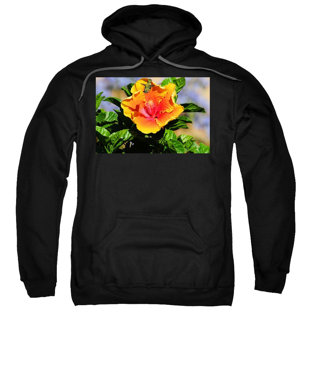 Hummers Sweatshirt featuring the photograph Me And My Shadow by Lynn Bauer