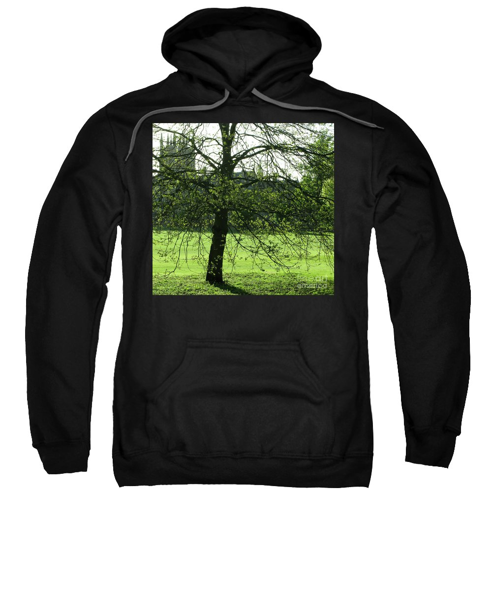 Oxford University Sweatshirt featuring the photograph Meadow View by Ann Horn