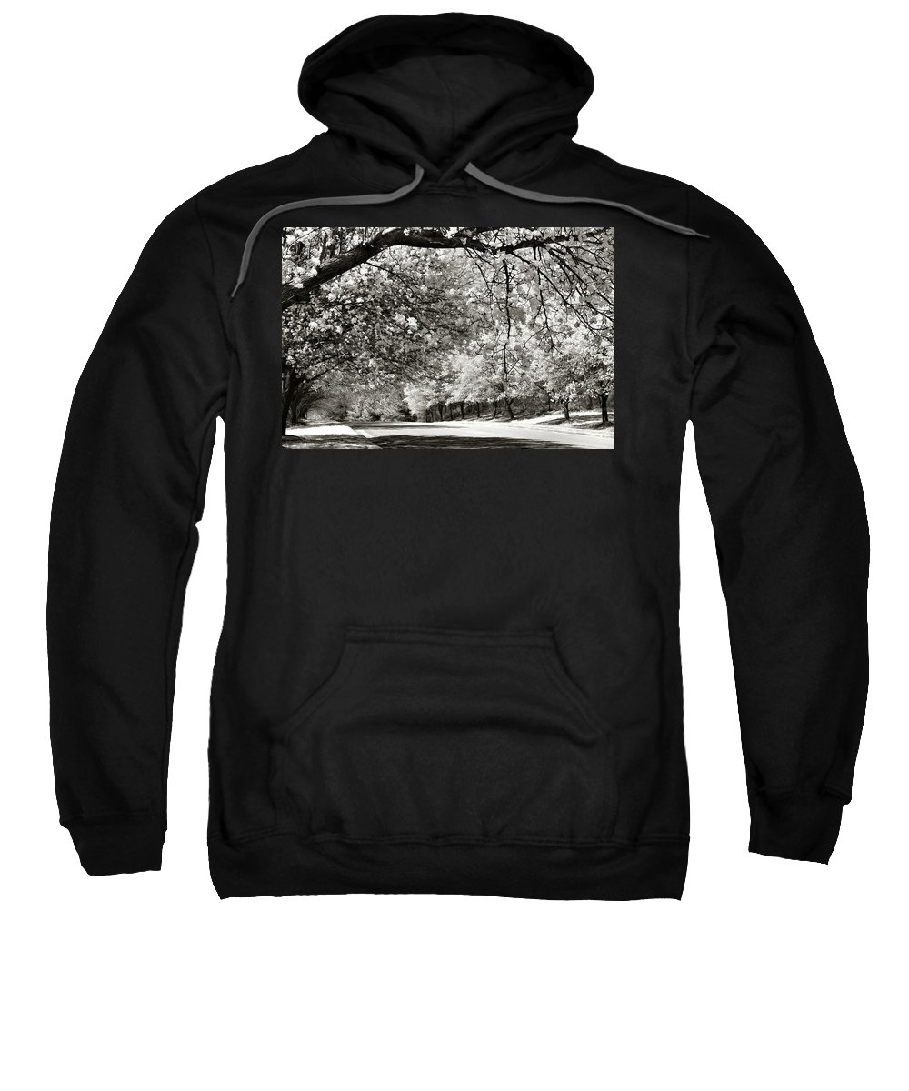Bradford Pears Sweatshirt featuring the photograph Memory Lane by Nadine Lewis