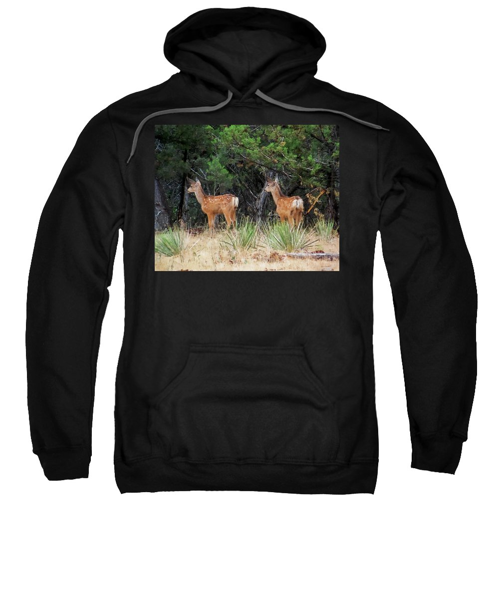 Deer Sweatshirt featuring the digital art Mommy Where Are You by Ernie Echols