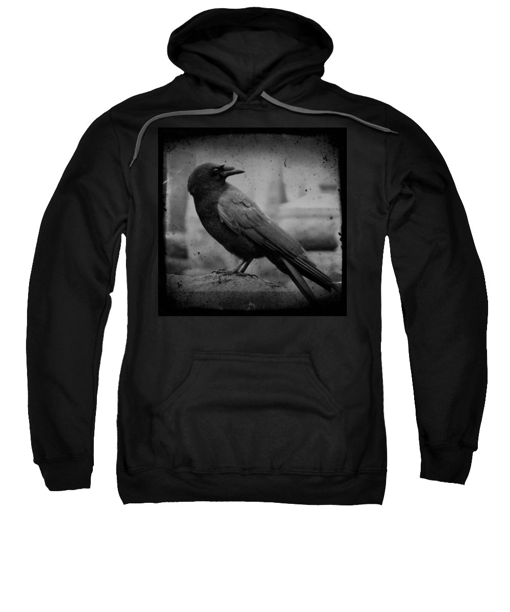 Monochrome Sweatshirt featuring the photograph Monochrome Crow by Gothicrow Images