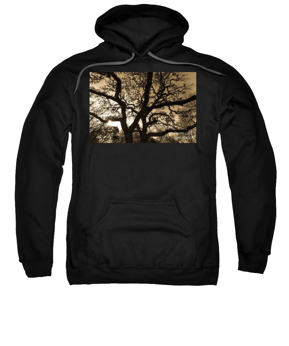 Austin Sweatshirt featuring the photograph Mother Nature's Design by John Wadleigh