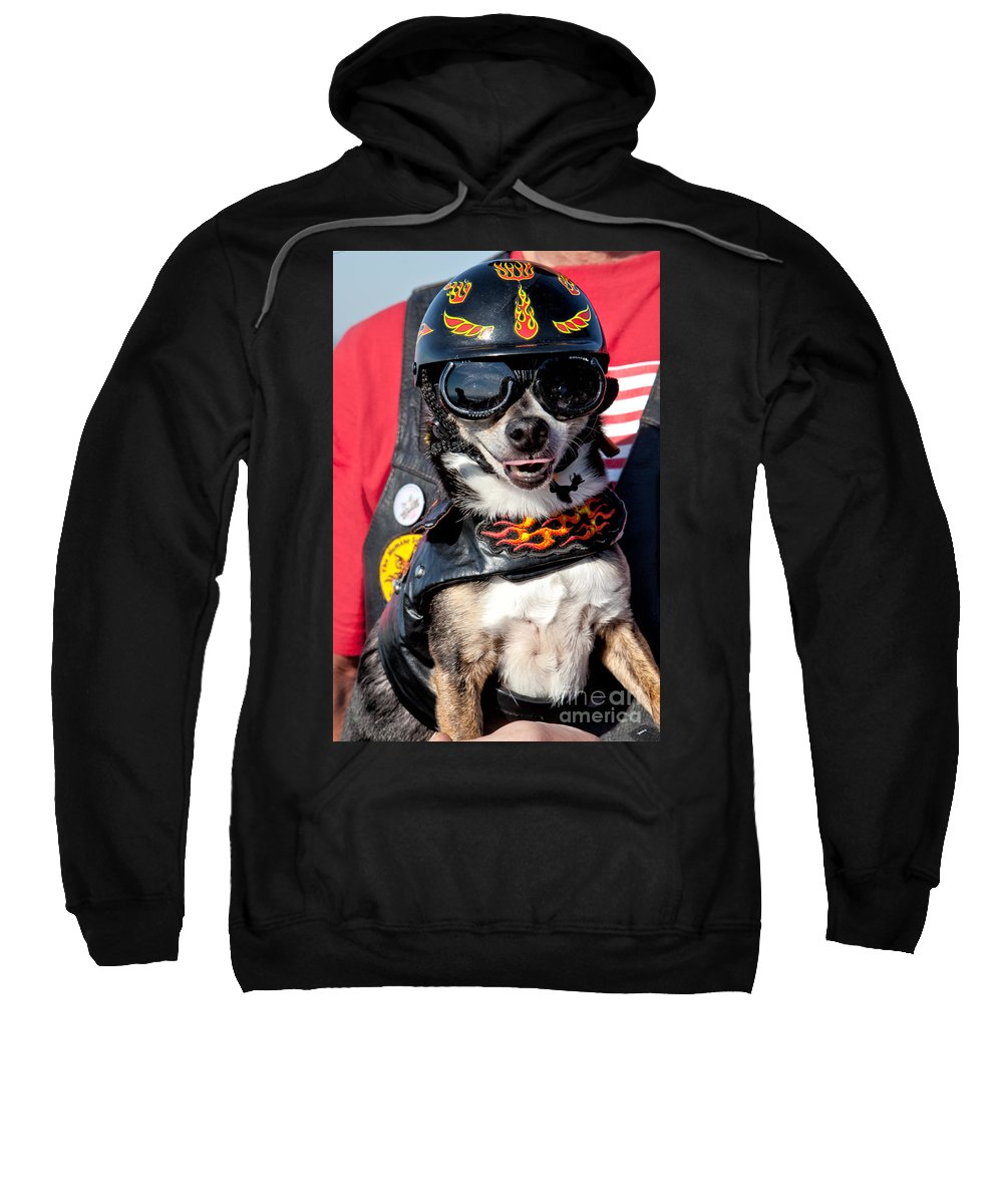 Dog Sweatshirt featuring the photograph Motorcycle Chihuahua by Jerry Fornarotto