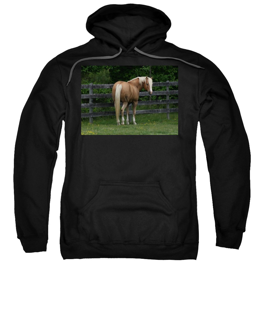 Horse Sweatshirt featuring the digital art My Dream Horse by Tina Meador