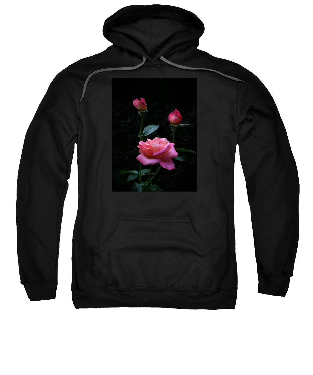 Pink Sweatshirt featuring the photograph My Evening Delight by Tammy Garner