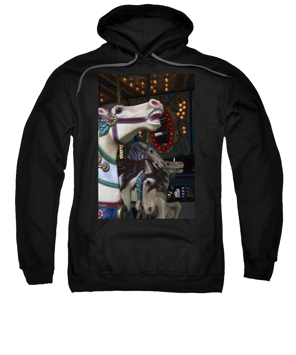 Carousel Sweatshirt featuring the photograph Neck And Neck by Guy Shultz