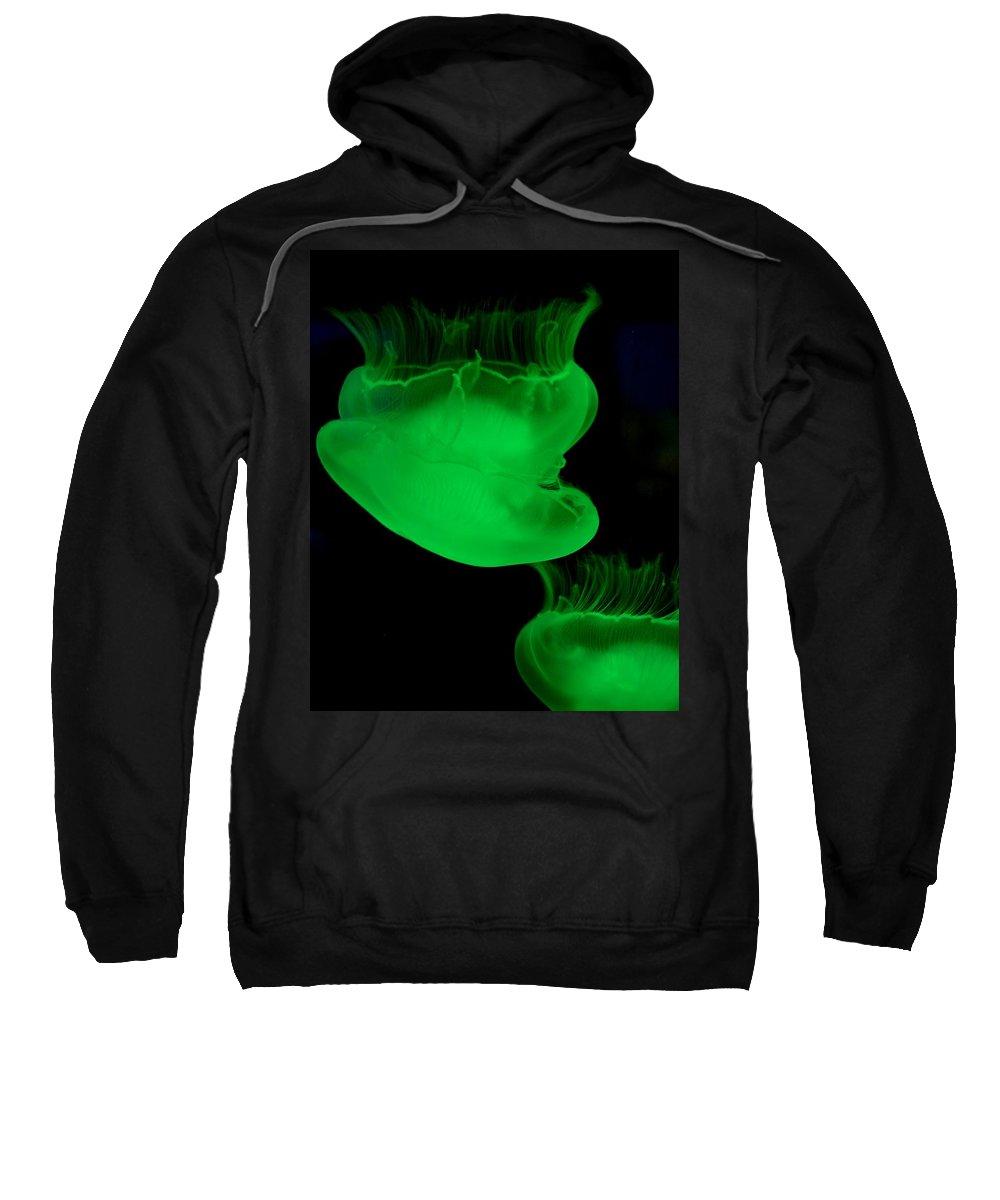 Neon Jellyfish Sweatshirt featuring the photograph Neon Jellyfish by Maria Urso