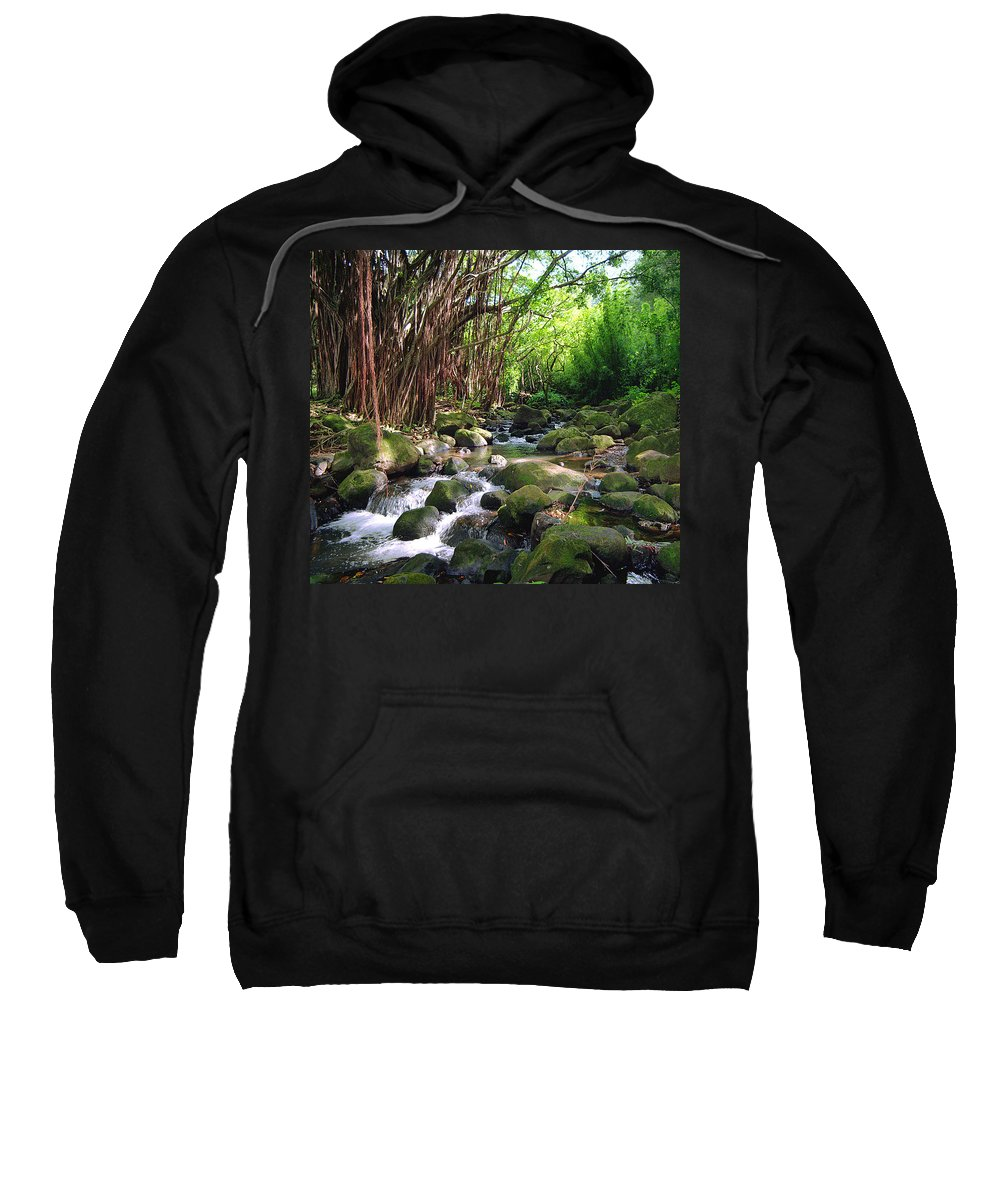 Banyan Sweatshirt featuring the photograph Banyan Nuuanu Stream by Kevin Smith