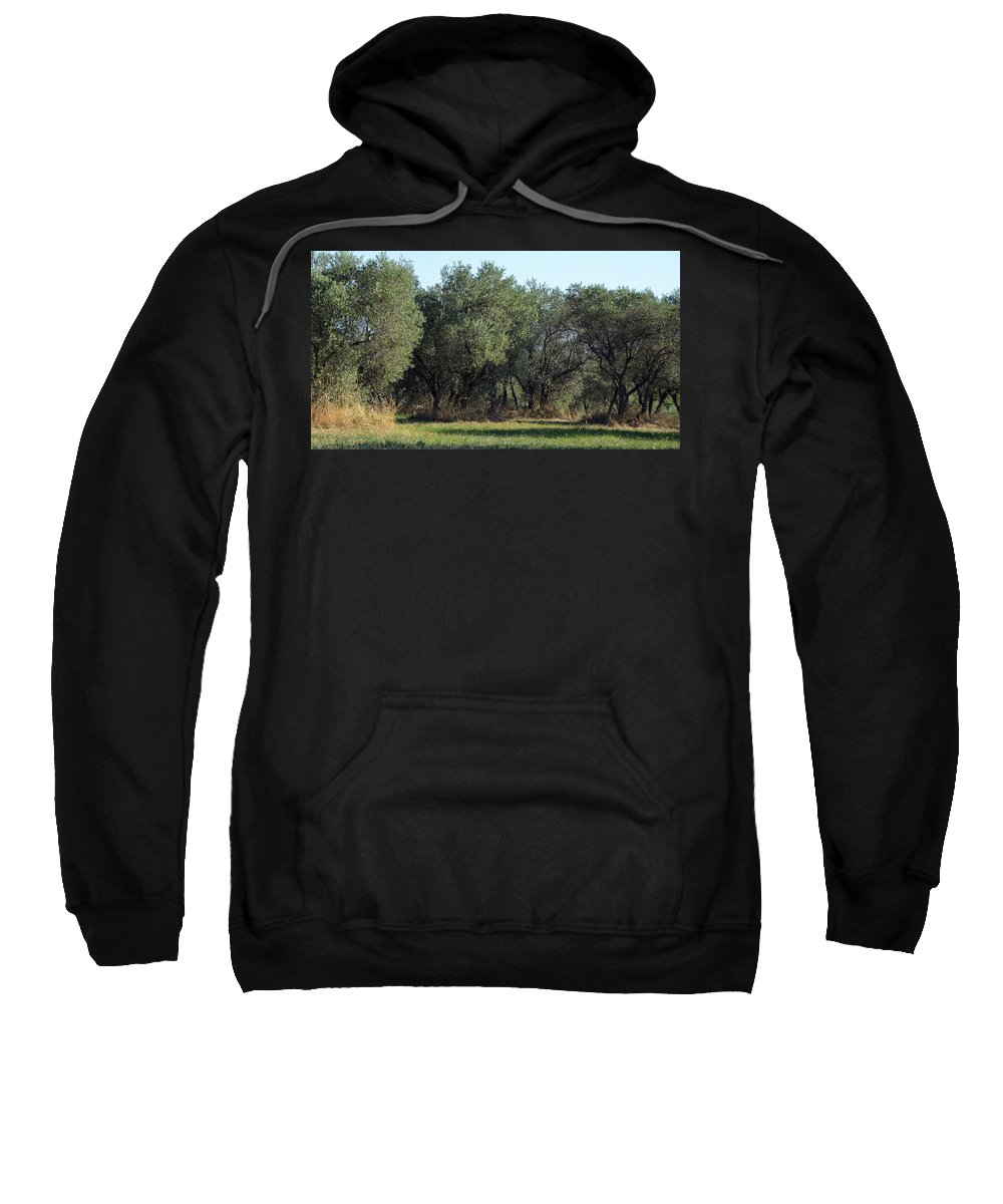 Olive Sweatshirt featuring the photograph Olive Trees Of Provence by Carla Parris