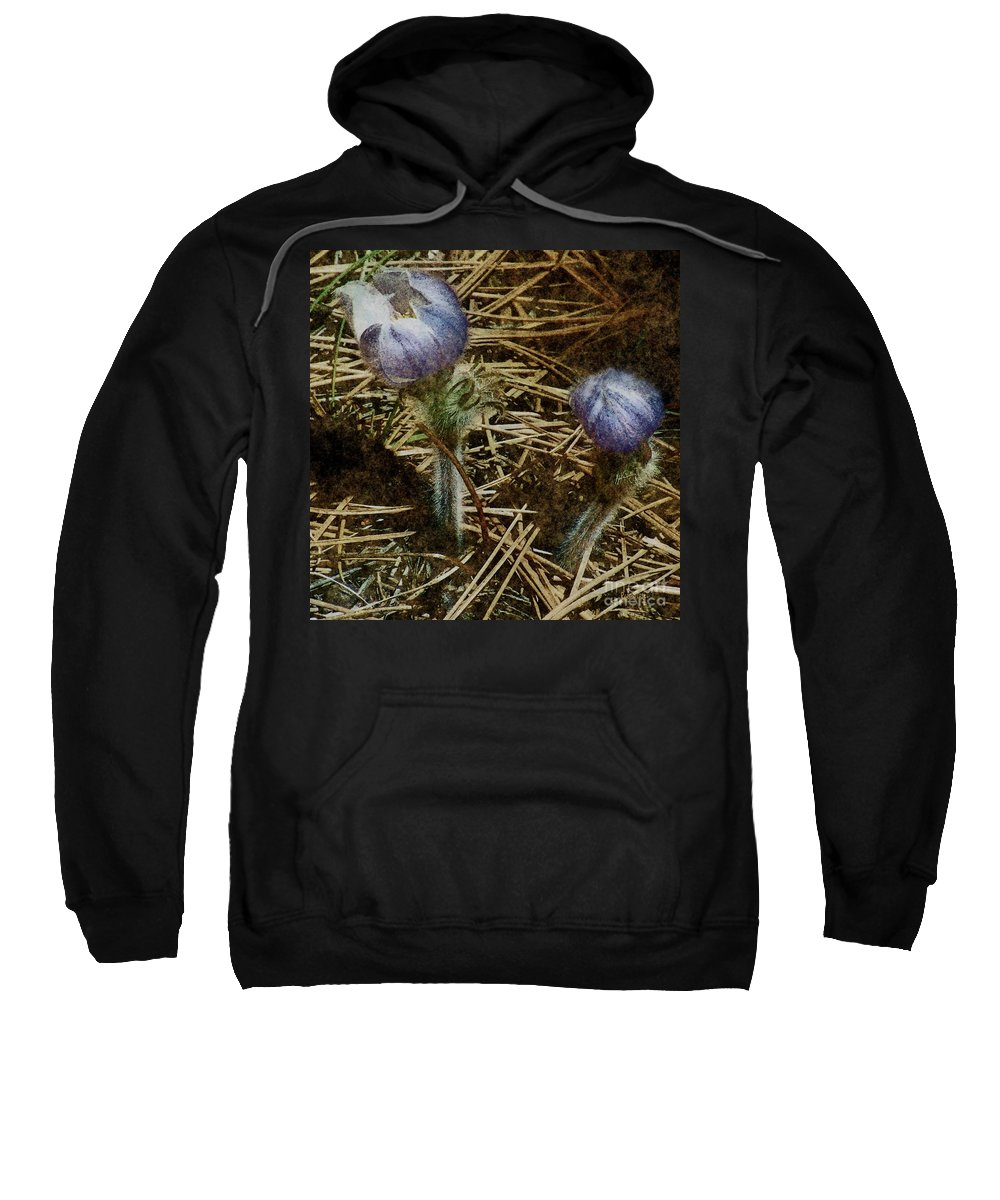 Colorado Sweatshirt featuring the painting On The Forest Floor by RC DeWinter