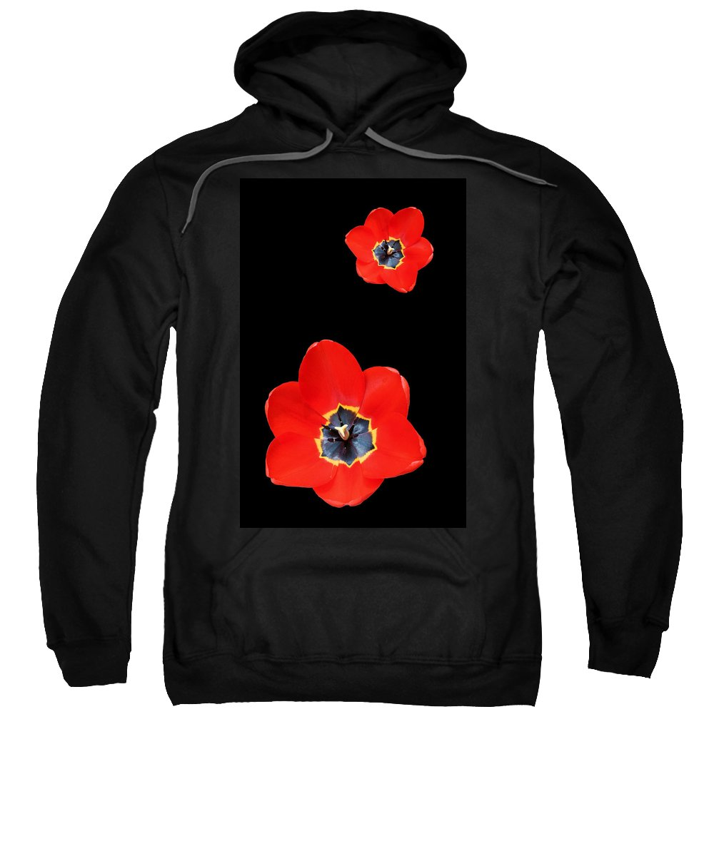 Agriculture Sweatshirt featuring the digital art Open Tulip by Nathan Wright
