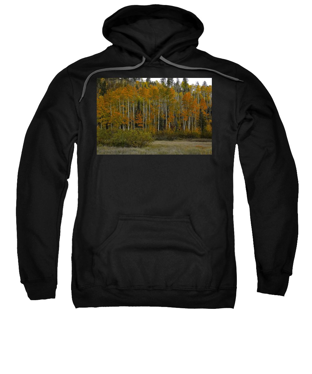 Landscape Sweatshirt featuring the photograph Orange Blossom Special by Bill Sherrell