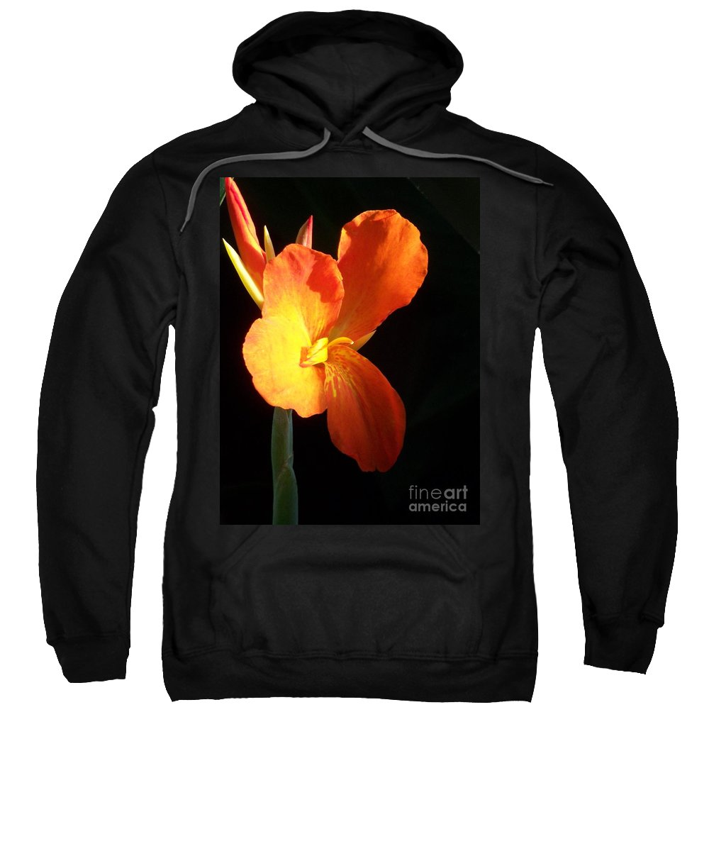 Garden Sweatshirt featuring the photograph Orange Flower Canna by Eric Schiabor
