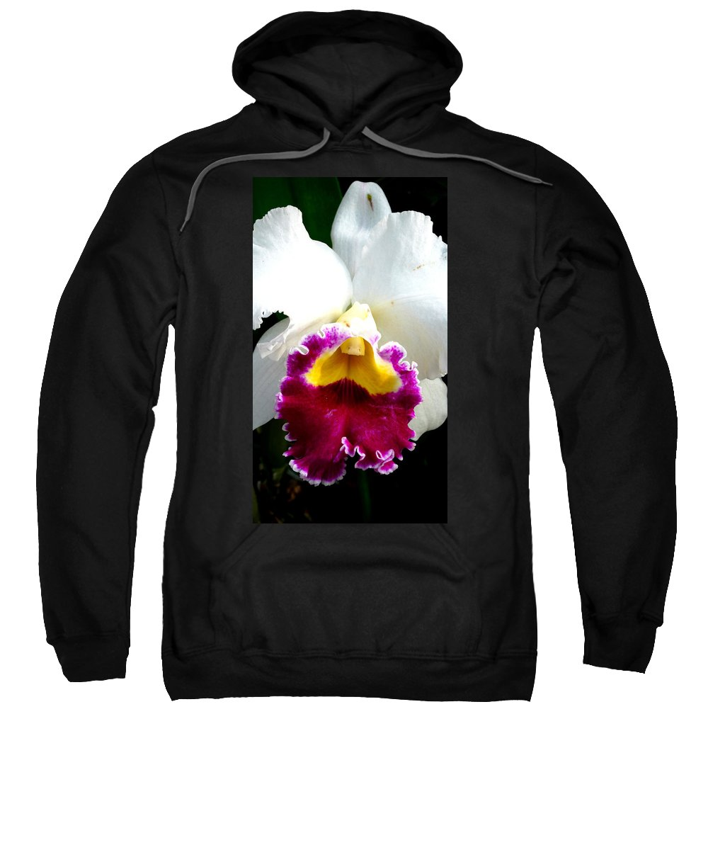 Orchid Sweatshirt featuring the photograph Orchid Series 2 by Katy Hawk