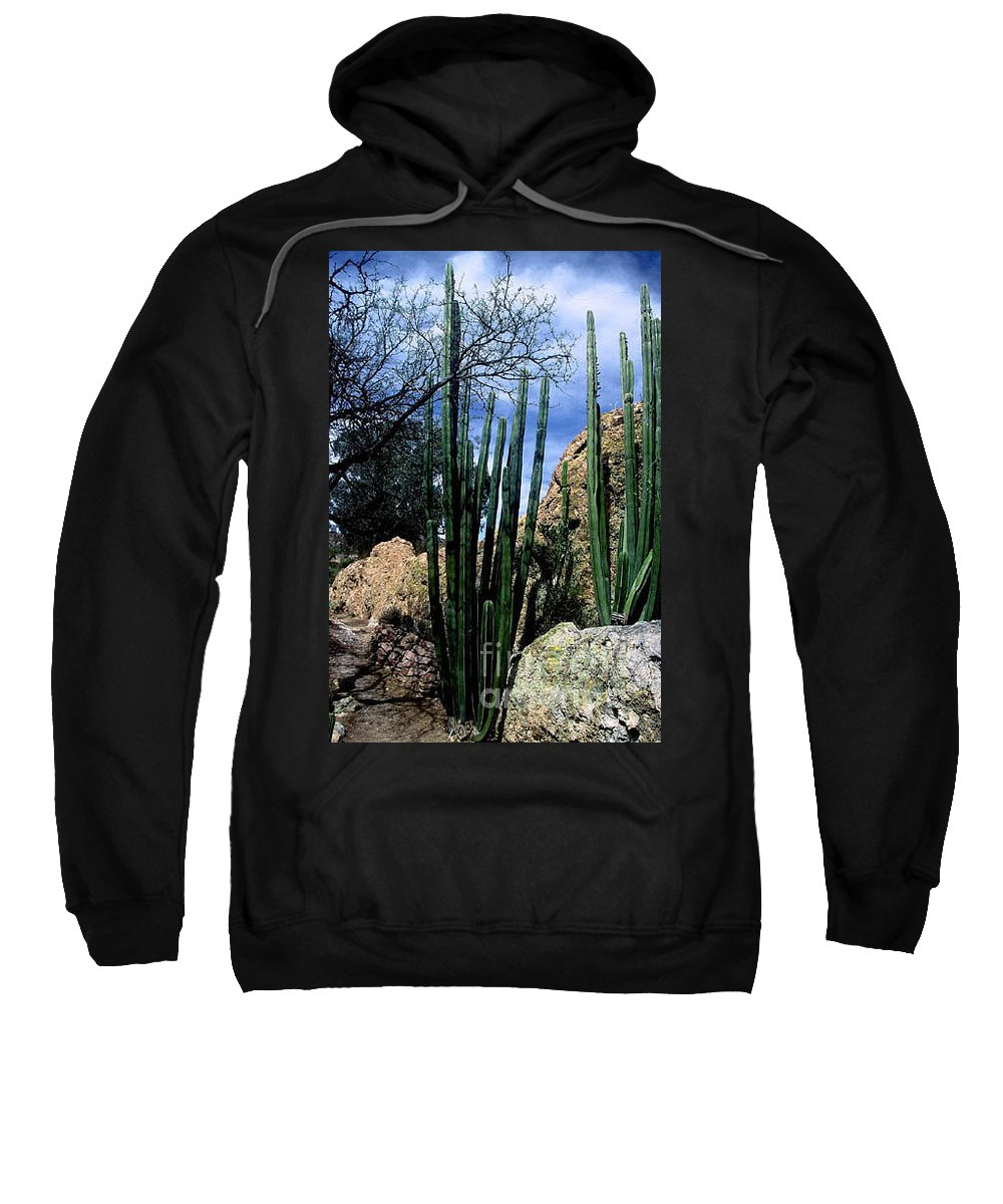 Cactus Sweatshirt featuring the photograph Organ Pipe by Kathy McClure