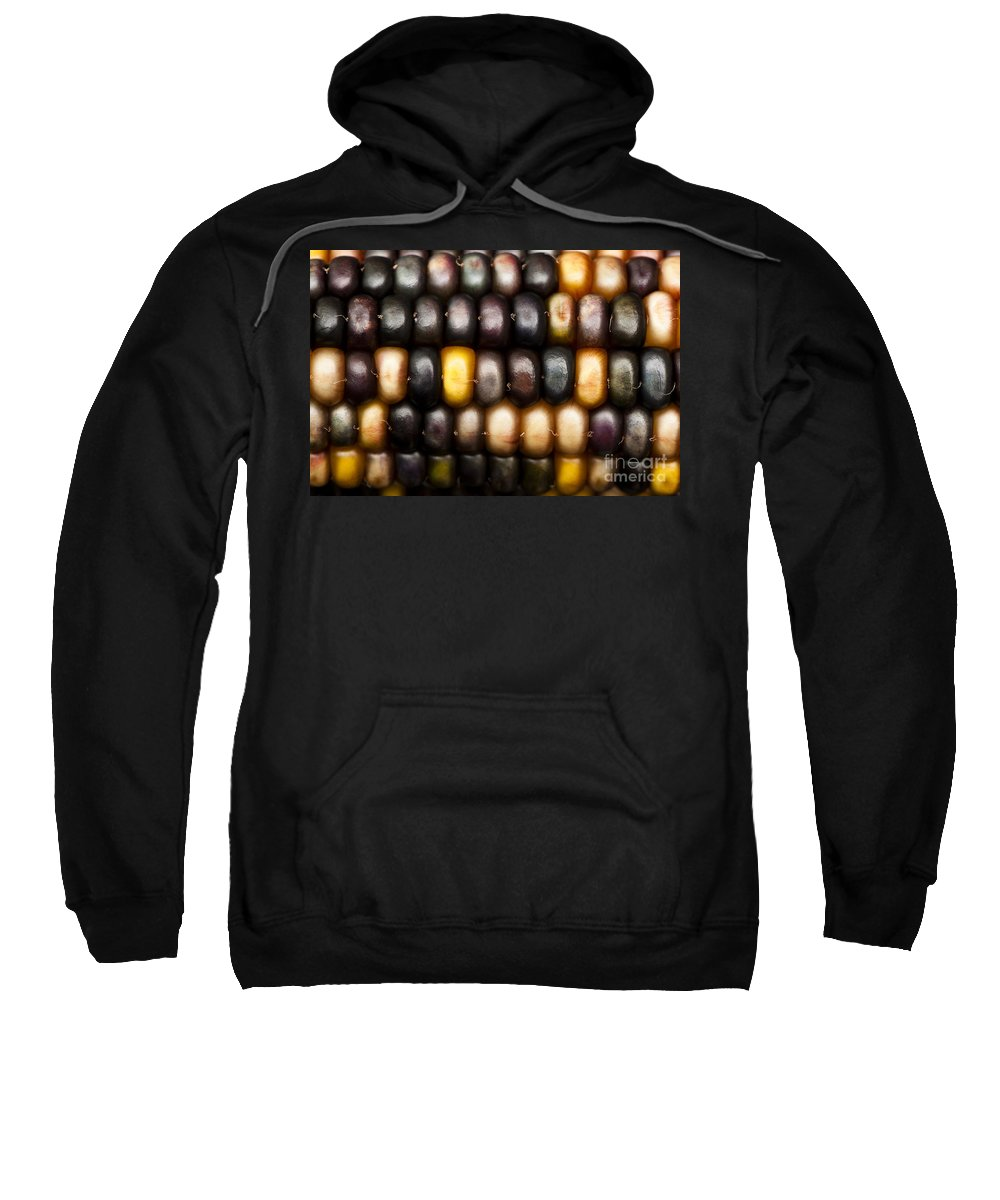 Abstract Sweatshirt featuring the photograph Ornamental Corn by Anne Gilbert