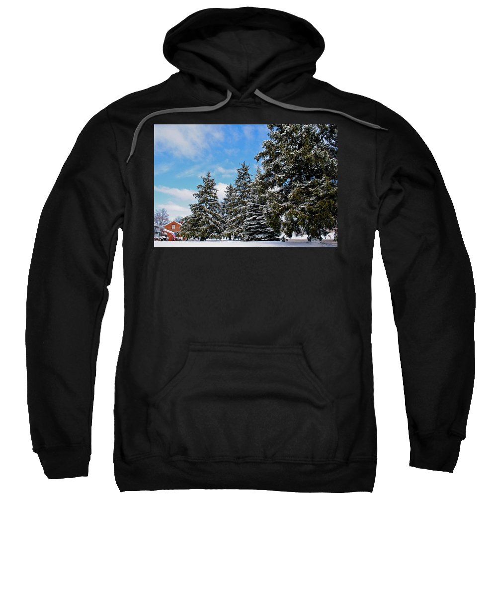 Painted Sweatshirt featuring the photograph Painted Pines by Frozen in Time Fine Art Photography