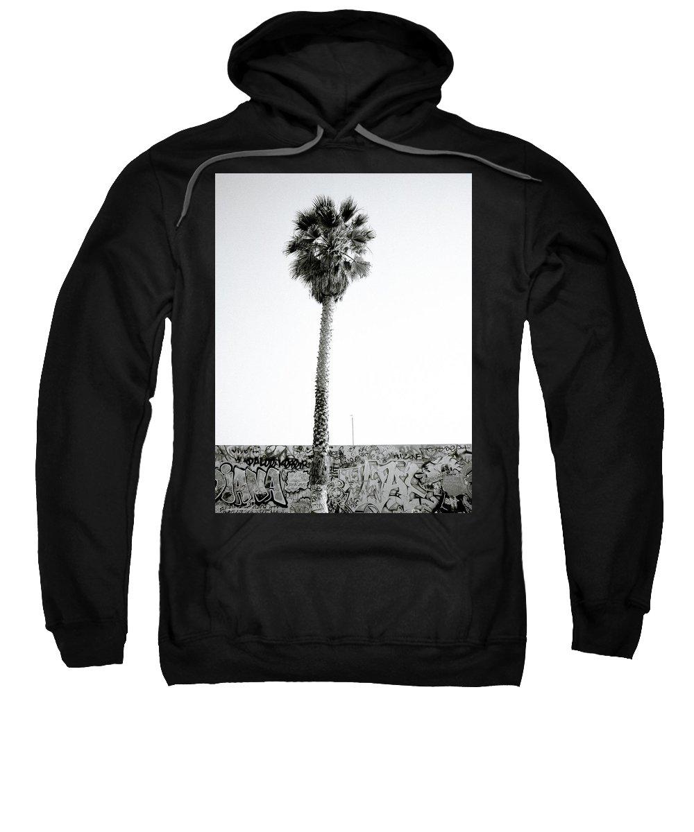 Graffiti Sweatshirt featuring the photograph Palm Tree And Graffiti by Shaun Higson